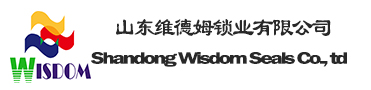 Shandong WIsdom Seals Co., Ltd.